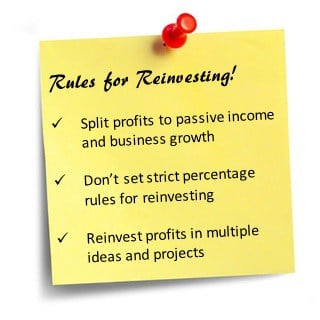 rules for reinvesting profits back into business