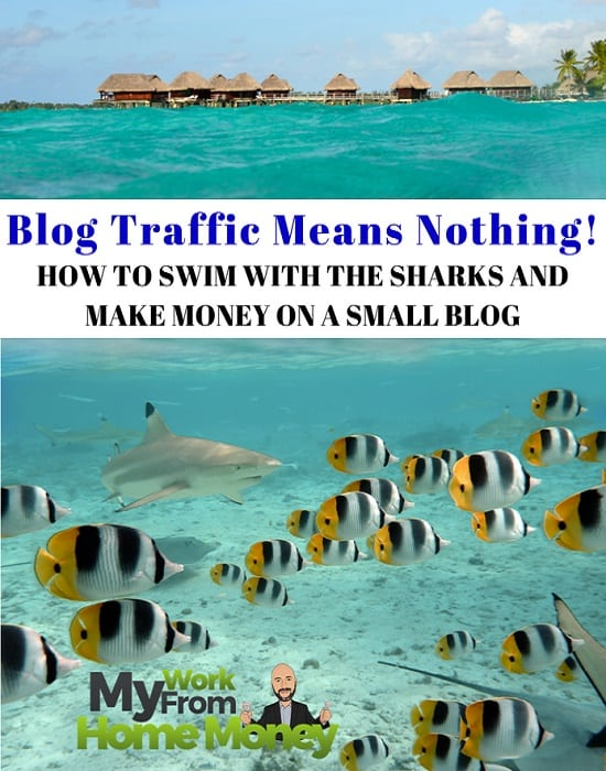 blog traffic beginner blogs