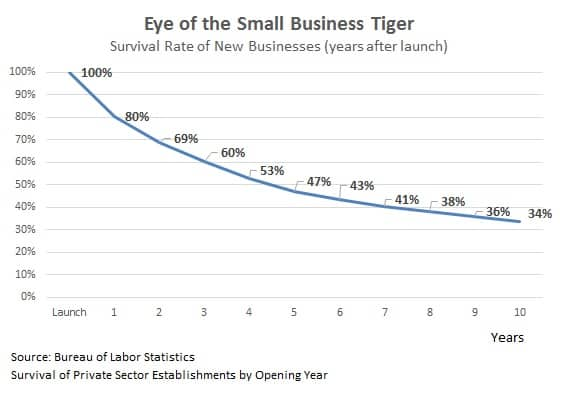 reasons why small businesses fail statistics