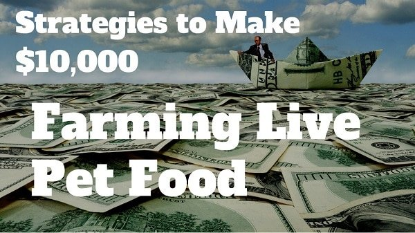 how to make money farming live pet food